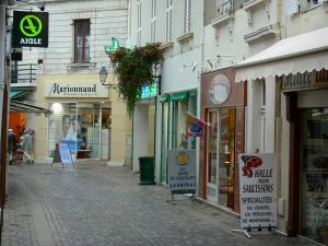 Les Sables-d'Olonne - Narrow shopping lane of the town centre lined with houses and shops