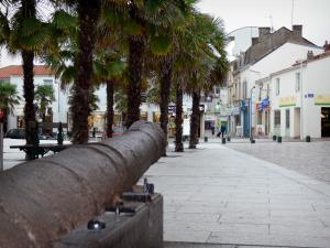 Les Sables-d'Olonne - Square with a cannon in foreground and palm trees, streets, houses and shops of the town centre