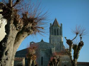 Sablonceaux abbey - Trees and abbey church in Saintonge