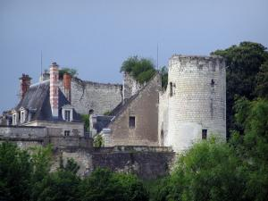 Saint-Aignan-sur-Cher - Remains of the former feudal castle, in the Cher valley