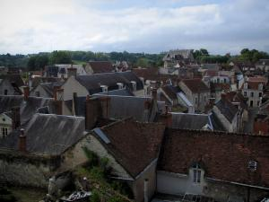 Saint-Aignan-sur-Cher - View of the roofs of the medieval town, in the Cher valley