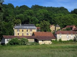 Saint-Amand-de-Coly - Houses of the village, field and trees