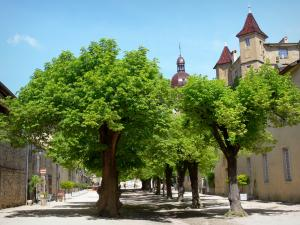 Saint-Antoine-l'Abbaye - Facades and lime trees in the great courtyard of the abbey