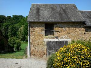Saint-Céneri-le-Gérei - Stone barn and blooming shrub