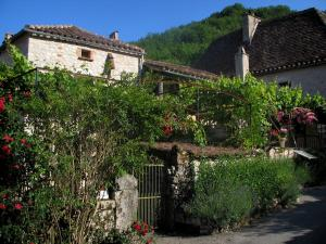 Saint-Cirq-Lapopie - Vegetation and houses of the village, in the Lot valley, in the Quercy