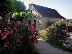 Saint-Cirq-Lapopie - Flower-bedecked shrubs and house in the village, in the Lot valley, in the Quercy
