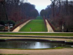 Saint-Cloud park - Lake, paths, lawns and trees (forest)