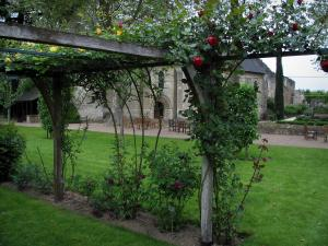 Saint-Cosme priory - Climbing roses (pink roses) in the garden
