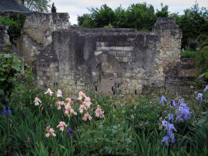 Saint-Cosme priory - Remains of the church and flowers of the garden