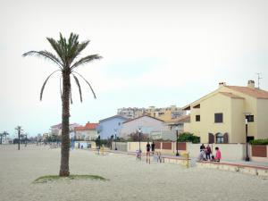 Saint-Cyprien - Sandy beach with palm trees, beach promenade and facades of the resort