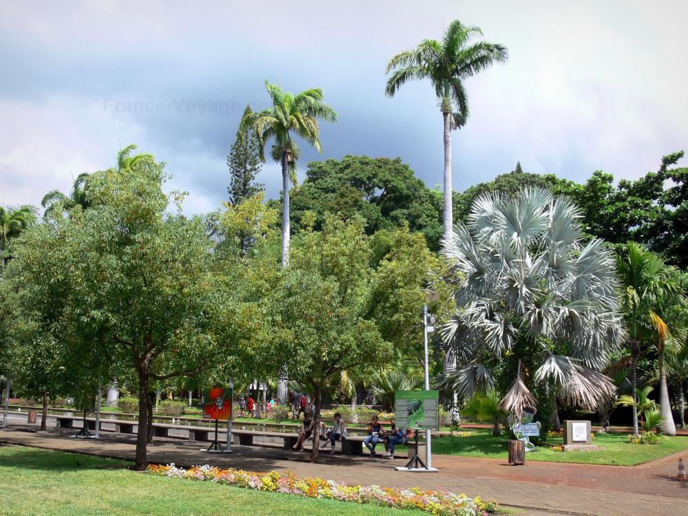 Photos saint denis guide tourisme vacances - Jardin potager bio saint denis ...