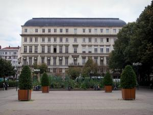Saint-Étienne - Shrubs in jars of the Hôtel-de-Ville square, trees and buildings of the city