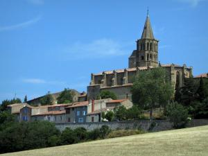 Saint-Félix-Lauragais - Collegiate Church (Chiesa), le case fortificate, alberi e campi, in Land of Plenty