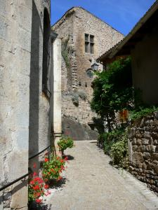 Saint-Floret - Street with flowers and facade of the castle in the background