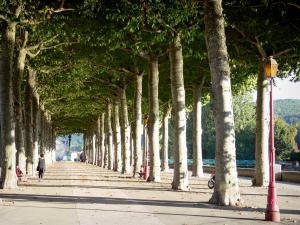 Saint-Girons - Promenade du Champ de Mars (lined with trees)