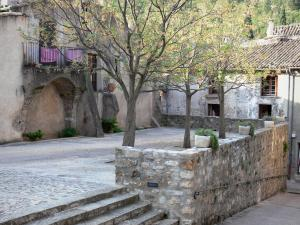 Saint-Guilhem-le-Désert - Small square decorated with trees and houses of the medieval village