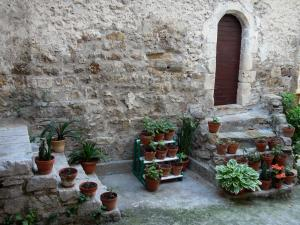 Saint-Guilhem-le-Désert - Facade of a stone house, small stairs decorated with plants in jars
