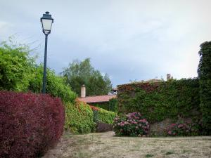 Saint-Haon-le-Châtel - Lamppost, shrubs, creepers and roof of a house