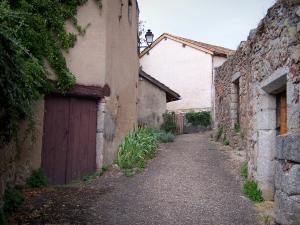 Saint-Haon-le-Châtel - Narrow street and houses of the medieval village