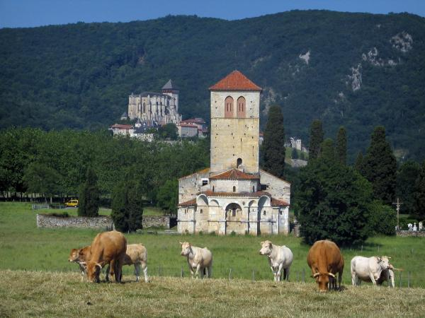 Saint-Just de Valcabrère basilica - Cows in a meadow in foreground, Romanesque basilica, trees, Saint-Bertrand-de-Comminges cathedral in background and a Comminges hill