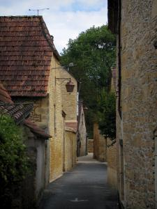 Saint-Léon-sur-Vézère - Narrow street lined with stone houses, in Périgord