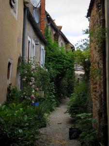 Saint-Léon-sur-Vézère - Narrow path lined with plants and houses, in Périgord