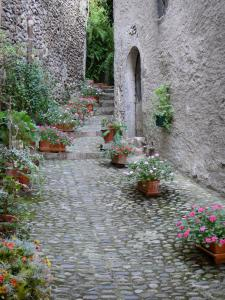 Saint-Lizier - Paved alley decorated with flowers