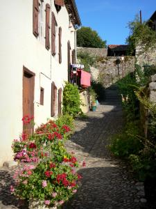 Saint-Lizier - Paved alley with flowers and a house facade