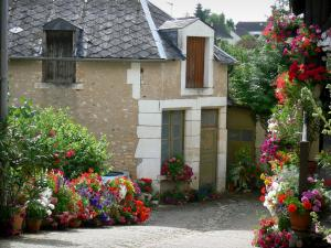 Saint-Marcel - House and floral decorations (flowers)