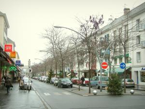 Saint-Nazaire - Shopping street of the city with buildings, trees and shops