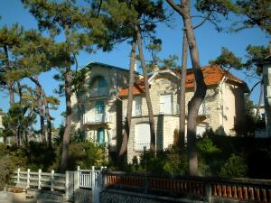 Saint-Palais-sur-Mer - Pine trees and villas (houses) of the seaside resort