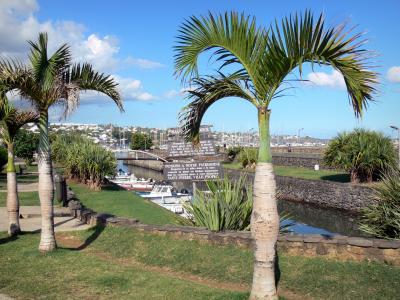 Reunion Saint Pierre Villa Motais De Narbonne