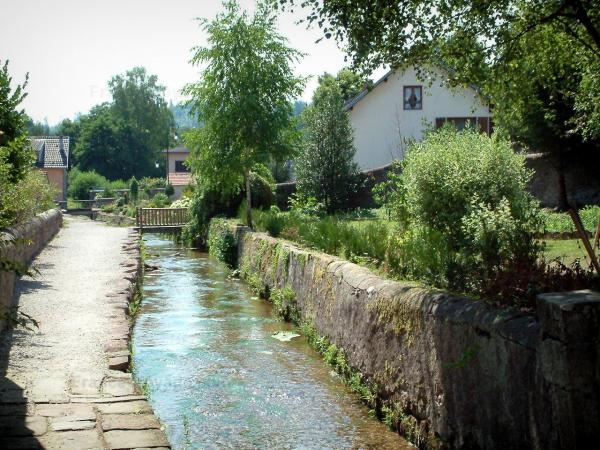 Saint-Quirin - Tourism, holidays & weekends guide in the Moselle