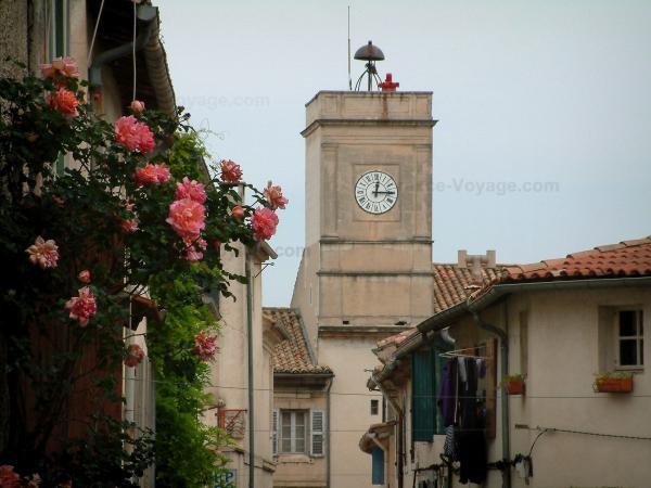 Saint r my de provence guide tourisme vacances for Entretien jardin st remy de provence