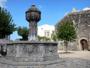 Saint-Saturnin - Renaissance fountain, trees and houses of the village
