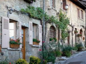 Saint-Sorlin-en-Bugey - Stone houses with vines, plants and flowers