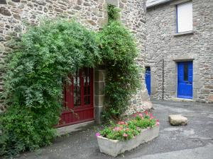 Saint-Suliac - Stone facades among, one decorated with creepers