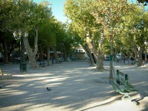 Saint-Tropez - Lices square with its plane trees, its benches and its fountain
