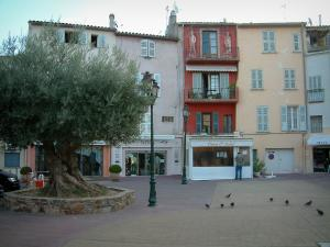 Saint-Tropez - Houses and shops looking onto a square decorated with an olive tree and lampposts