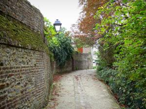 Saint-Valery-sur-Somme - Upper town (medieval town): narrow street
