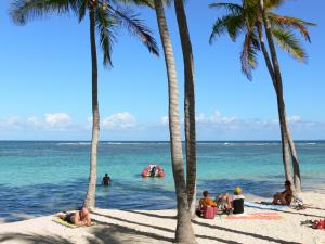 Sainte-Anne - Lazing on the white sand of the Caravelle beach, in the shade of coconut trees along the lagoon