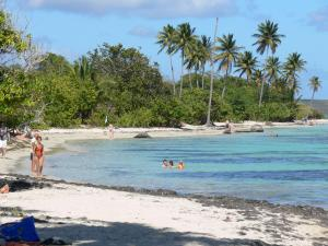 Sainte-Anne - Swimming in the turquoise lagoon of the Bois Jolan beach