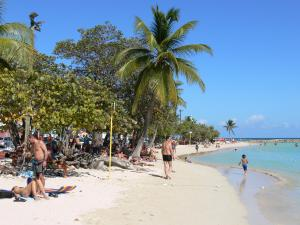 Sainte-Anne - Relaxing on the sandy beach of the village, in the shade of coconut palms and sea grapes, along the lagoon