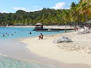 Sainte-Anne - Caravelle beach with its white sand, coconut trees and lagoon