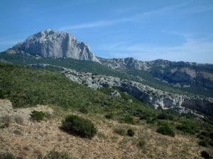 Sainte-Baume massif - Vegetation (scrubland) and rock faces (cliffs)