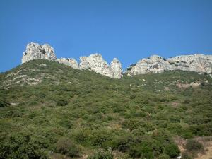 Sainte-Baume massif - Vegetation (scrubland) and rock faces
