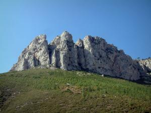 Sainte-Baume massif - Vegetation (scrubland), trees and rock faces (cliffs)