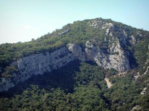 Sainte-Baume massif - Rock faces, undergrowths and trees