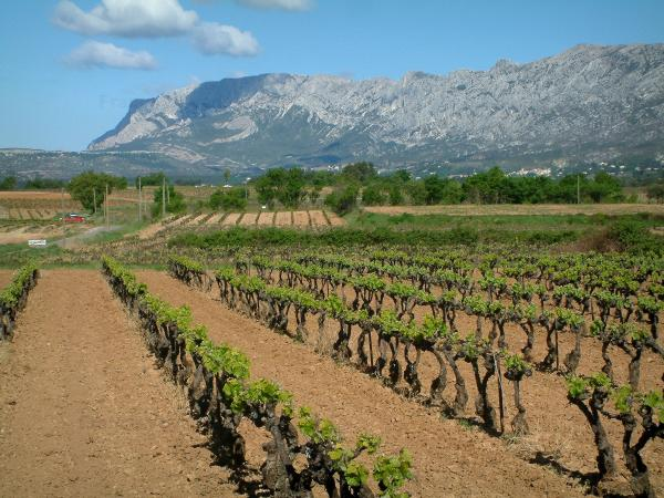 The Sainte-Victoire mountain - Tourism, holidays & weekends guide in the Bouches-du-Rhône