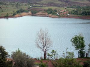 Salagou lake - Reservoir, shores and trees